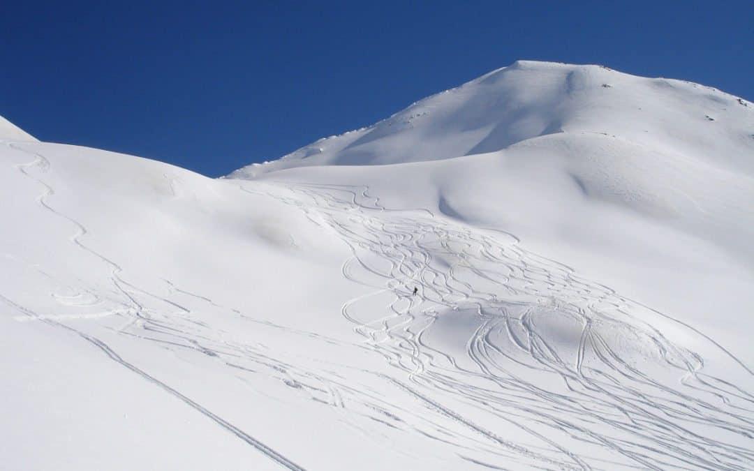 Skiskole 2020